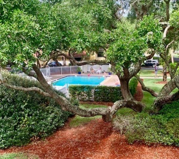 pool at beach and tennis resort